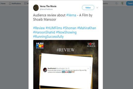 Verna Twitter Review